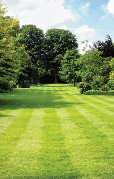 See our range of Lawnmower Oils